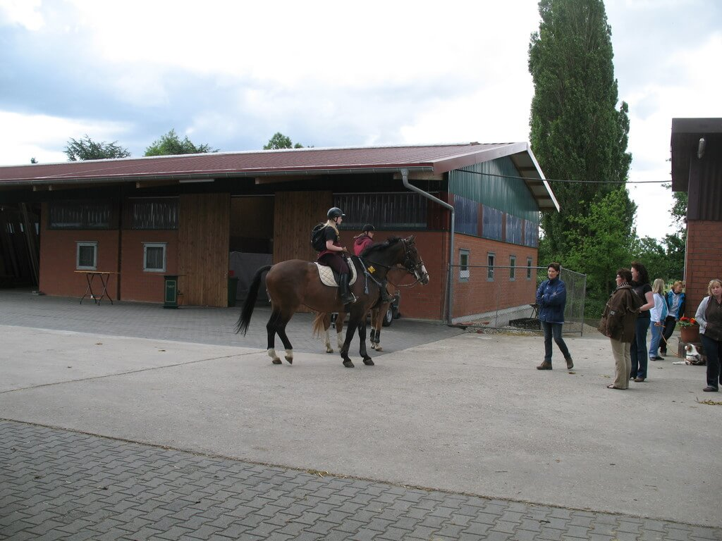Reitanlage Fockenberg Sport